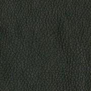 Gr-1Black