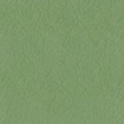 Gr2Cavern Moss